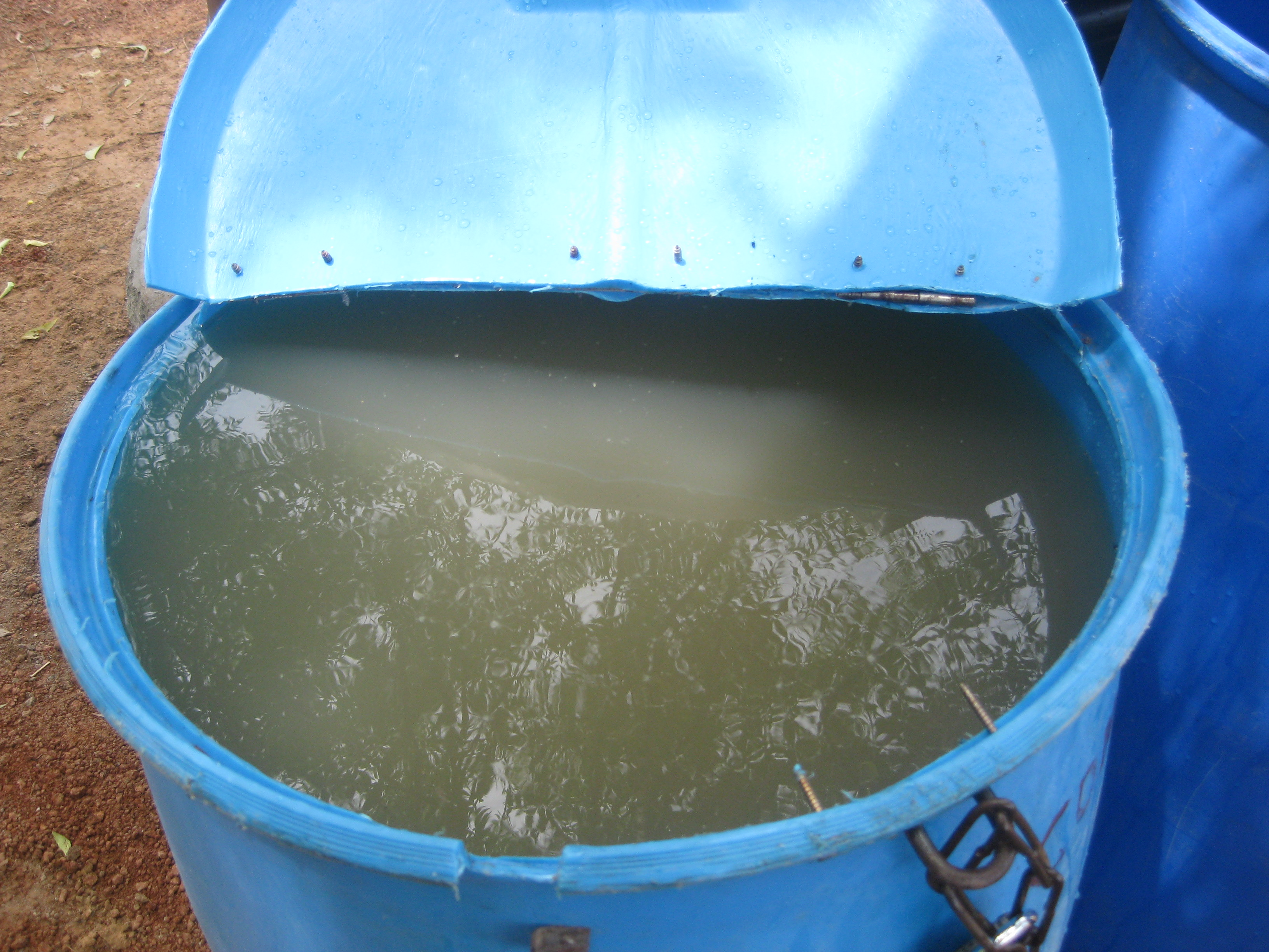 "The ""before"" shot.  Dugout water in the blue tub ready to be treated!"