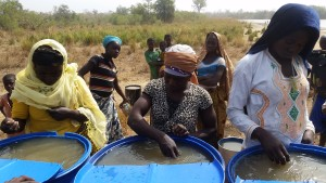 Fatima, Fatimata, and Maria treat their first batch of dugout water with alum.